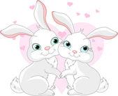 Bunnies in love — Stock Vector