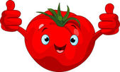Tomato Character giving thumbs up — Stock Vector