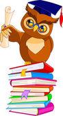 Cartoon Wise Owl with graduation cap and diploma — Stock Vector