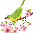 Spring bird — Stock Vector