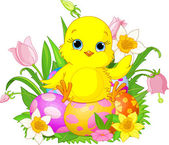 Happy Easter chick — Stock Vector