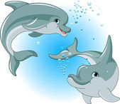 Dolphins couple — Stock Vector