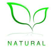 Vector Natural Design — Stock Vector