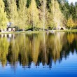Beautiful forest lake — Stock Photo