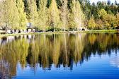 Beautiful forest lake — Stock Photo