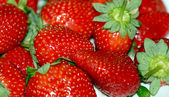 Large juicy fresh strawberry — Stock Photo