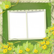 Grunge paper frames with flowers pumpkins and ribbons — Photo