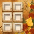 Grunge papers design in scrapbooking style with frame and autumn — Stock Photo #4026887