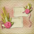 Card for congratulation or invitation with pink roses — Stock Photo