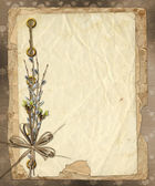 Vintage album with bunch of willow and bow — Stock Photo
