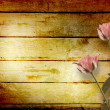Weathered wooden planks with pink beautiful roses — Stock Photo