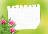 Cartão para convite ou felicitações com lírios rosa — Fotografia Stock
