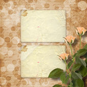 Grunge paper for congratulation with cream roses — Stock Photo