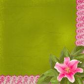 レースと抽象的な背景に美しいピンクのユリの花 — ストック写真