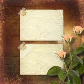 Papier grunge pour félicitation avec roses crème — Photo