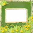Grunge paper frames with flowers pumpkins and ribbons — Foto de Stock