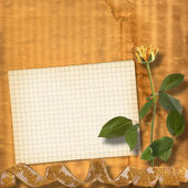 Grunge paper for congratulation with beautiful roses — Stock Photo