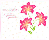 Flower background floral background isolated — Vetor de Stock
