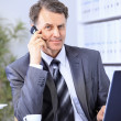 Businessman sitting in office with laptop on telephone — Stock Photo