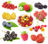 Set of Fresh Berries — Stock Photo