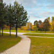 Path in Autumn Landscaped Park — Stock Photo