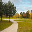 Path in Autumn Landscaped Park — Stock Photo #4196891