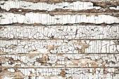 Fond bois fissuré — Photo