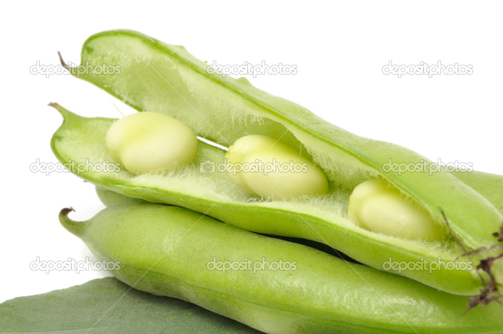 Broad beans in pods with a green leaf on a white background — Stock Photo #4254459