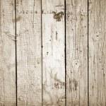 Wood Background — Stock Photo #5095577