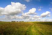 Rural Landscape — Стоковое фото