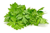 Fresh Parsley — Stock Photo