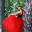 Lady in Red — Stock Photo #4554047
