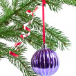 Christmas decoration — Stock Photo #4299571