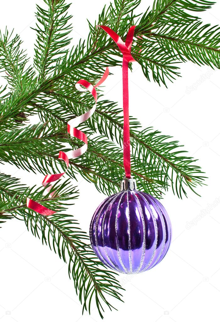 Christmas and new-year decorations. Fir tree branch with decoration on a white background  Stock Photo #4299571
