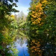 Autumn landscape with pond — Stock Photo #3975279
