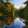 Autumn landscape with pond — Stock Photo #3975306