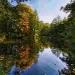 Autumn landscape with pond — Stock Photo