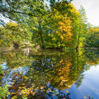 Autumn landscape with pond — Stock Photo #3975334