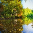 Autumn landscape with pond — Stock Photo #3975384