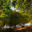 Autumn landscape with pond — Stock Photo #3975429