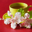 The cup of green tea — Stock Photo