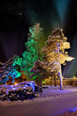 Trees in colourful illuminations at christmas night — Stock Photo