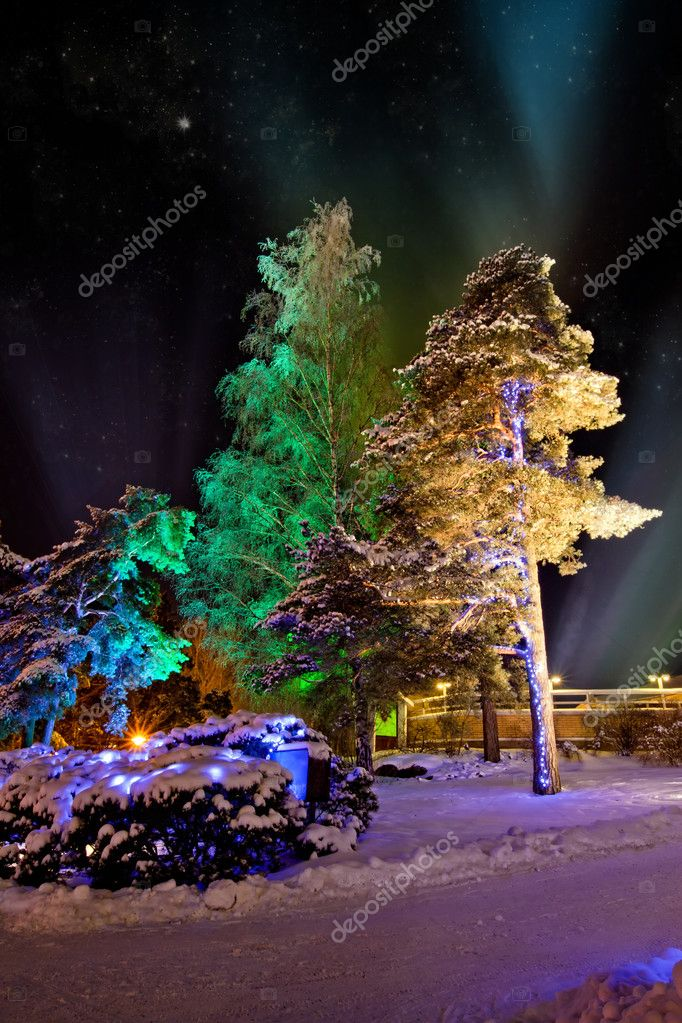 Trees in colourful illuminations at christmas night — Stock Photo #4310114