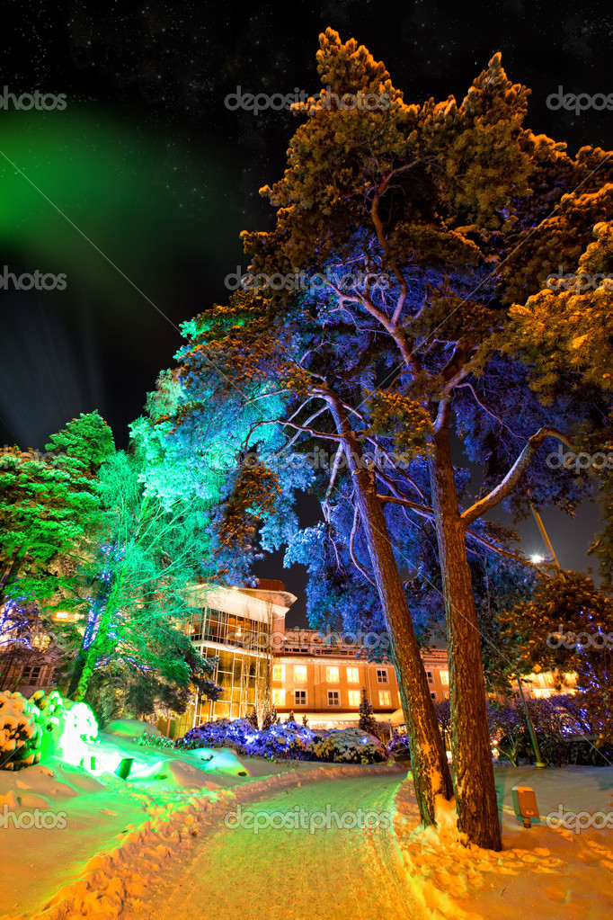 Trees in colourful illuminations at christmas night — Stock Photo #4310127
