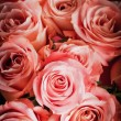 Background of pink roses — Stock Photo #4422986