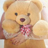 A light brown teddy bear — Stock Photo