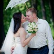 Newlyweds portrait — Stock Photo #4793714