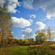 Stock Photo: Sunny autumn day