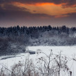 Winter landscape at sunset — Stockfoto