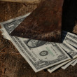 Dollar bills under sharp old axe - Stock Photo